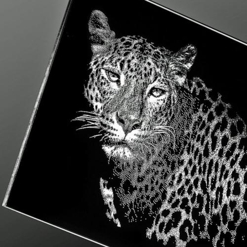 Leopard gelasert auf Super Black